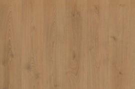 PARCHET LAMINAT STEJAR 11mm EGGER -REZISTENT LA ZGARIETURI - NORTHLAND OAK HONEY EGGER