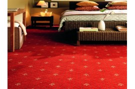 MOCHETA CRIN IMPERIAL HOTEL, RESTAURANT, SALA EVENIMENTE,  DE TRAFIC INTENS Balta ARC Edition