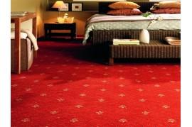 MOCHETA CRIN IMPERIAL hotel,restaurant, sala evenimente,  de trafic intens Balta ARC Editi